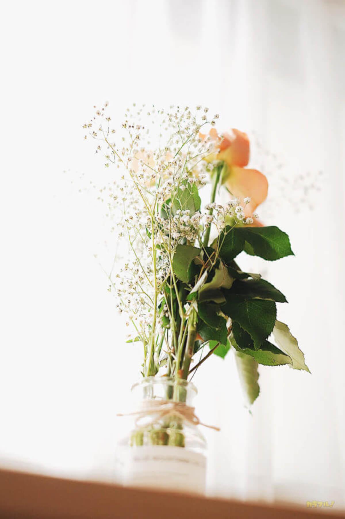バラとかすみ草を花瓶に入れてます