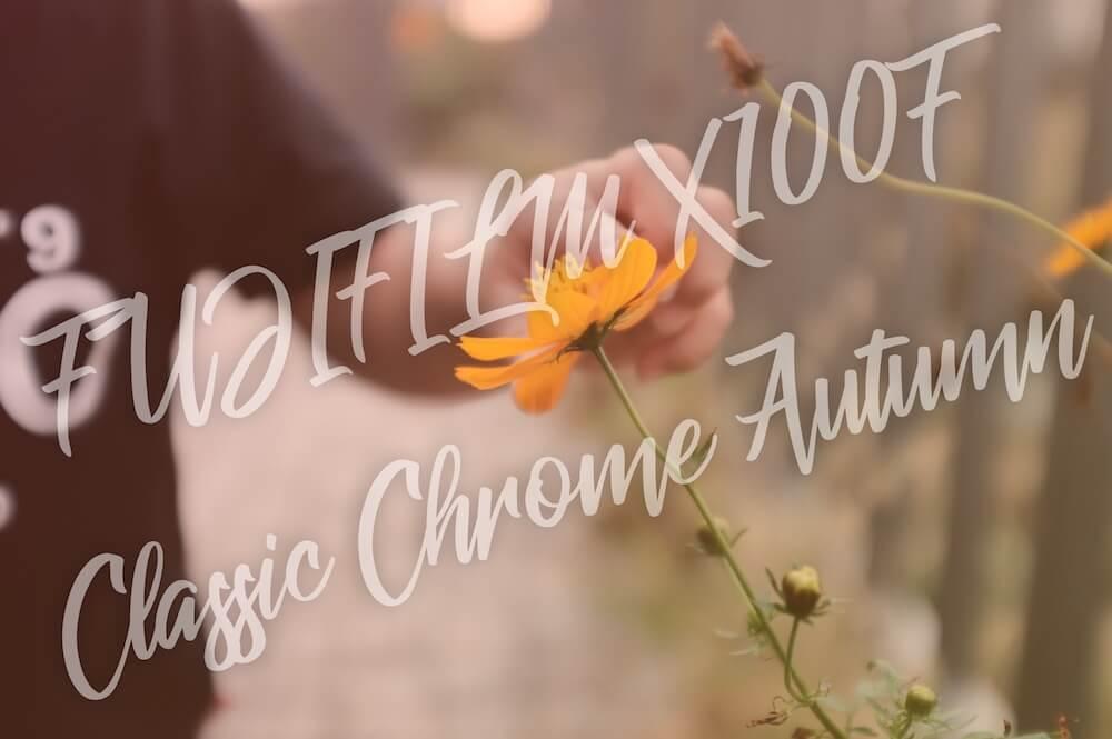 秋の空気感をFUJIFILM X100Fとクラシッククロームベースの設定で撮る作例
